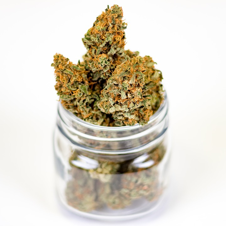 cannabis flower in a jar