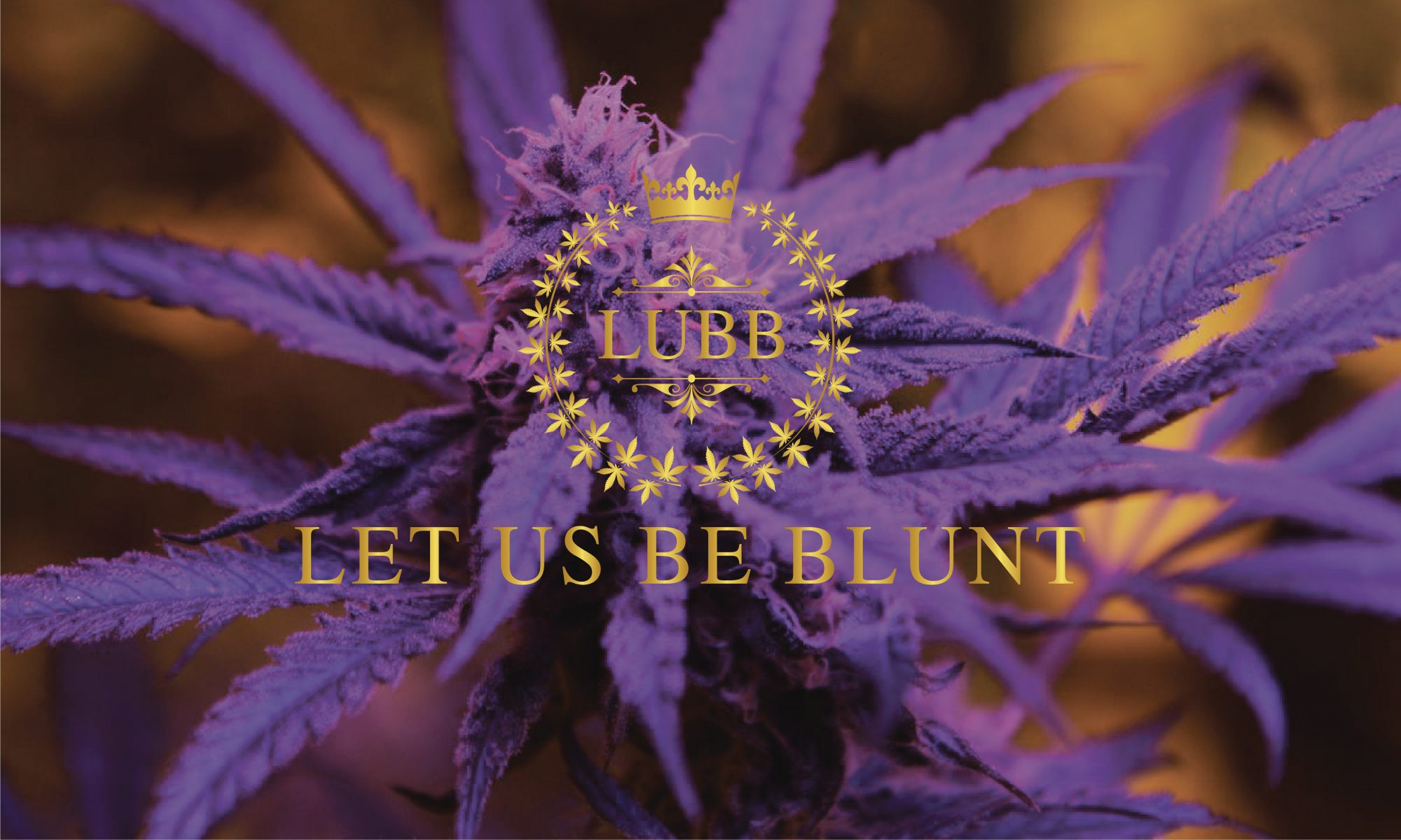 Let Us Be Blunt